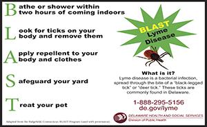 Lyme Disease Information Delaware Health And Social